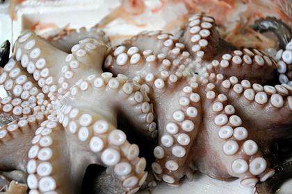 Кореянка съела сырого кальмара и «оплодотворилась»