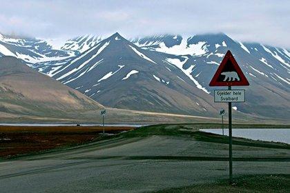 Стали известны условия содержания ограбившего в Арктике банк россиянина