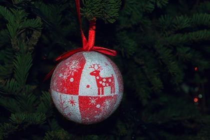 Назван срок избавления от новогодней елки в доме