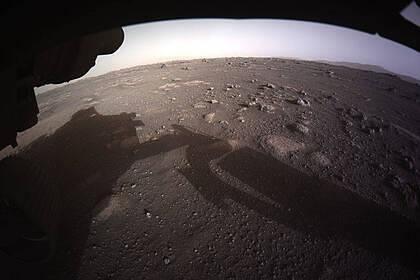 Споры плесени оказались способны пережить полет на Марс