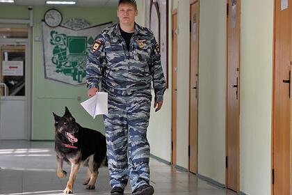 Ученики еще одной российской школы получили сообщения о готовящейся атаке